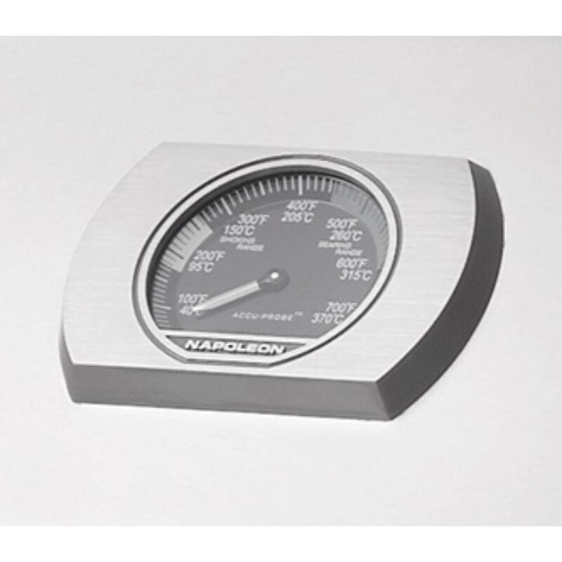 ACCU-PROBE ™ hőmérő